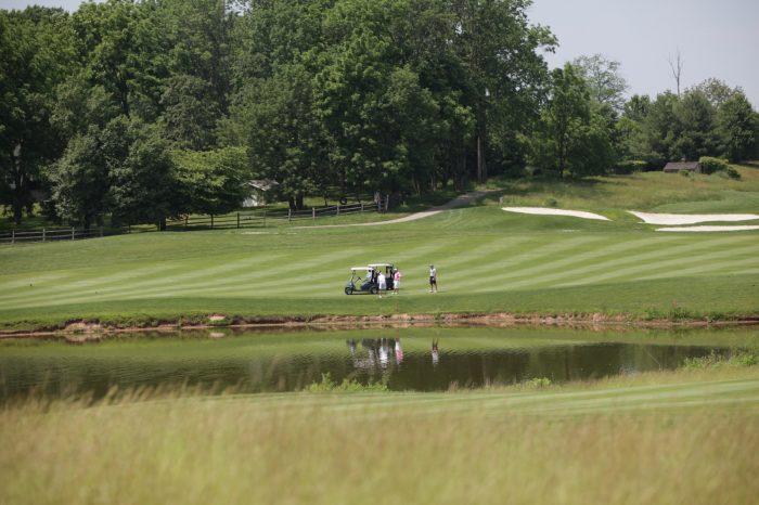 Golf 203 (2)